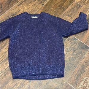 Sparkly Zara sweater